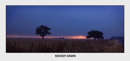 Moody Dawn